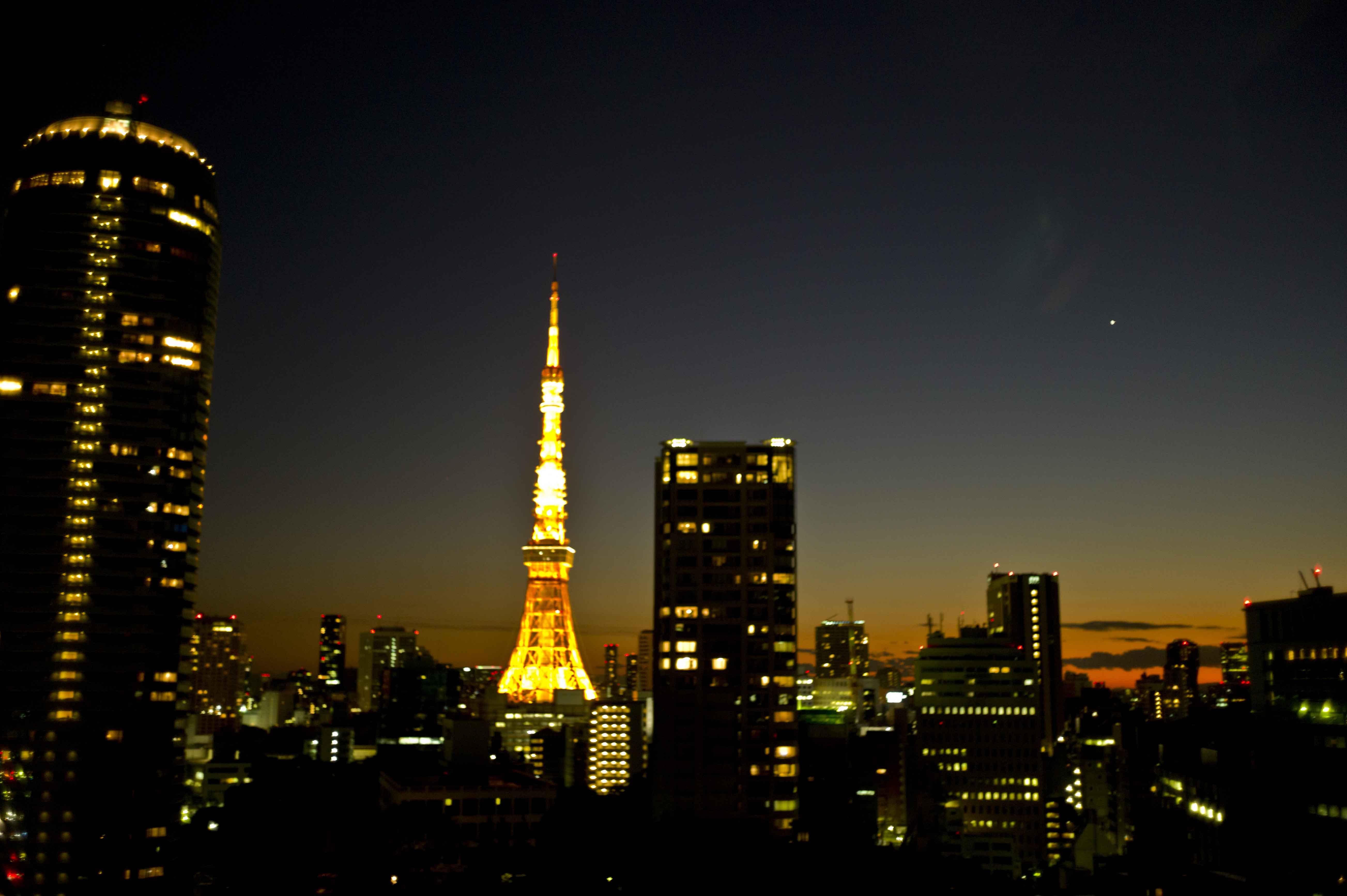 東京の観光公式サイトGO TOKYO